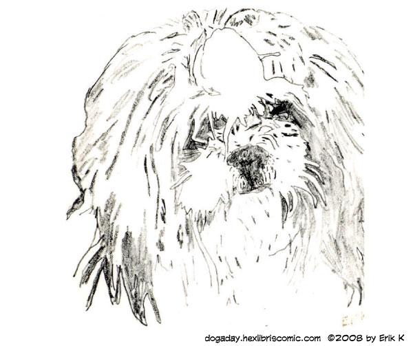 early drawing of Suki