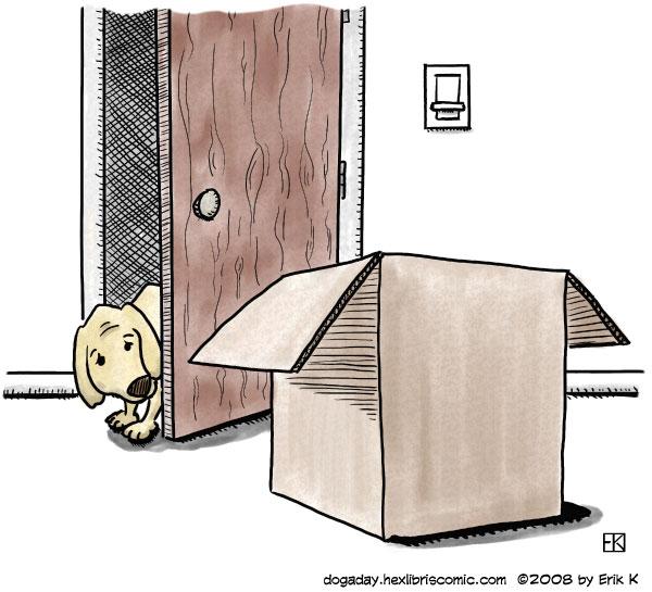 dog a day box fear image