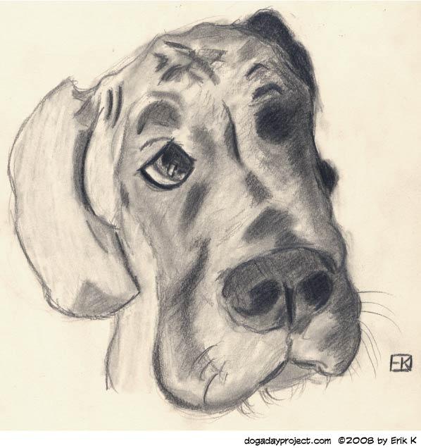 dog a day sketchbook pencils