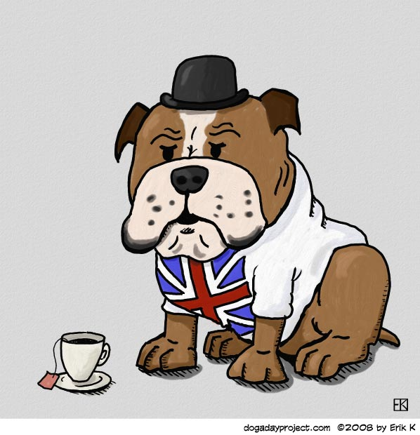 dog a day british bulldog