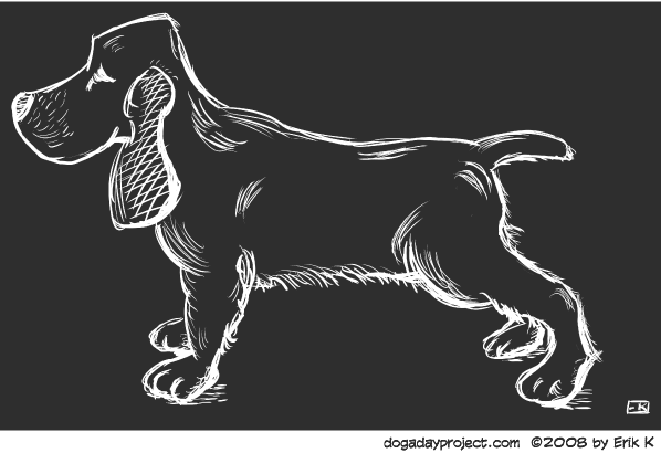 dog a day scratchboard cocker spaniel