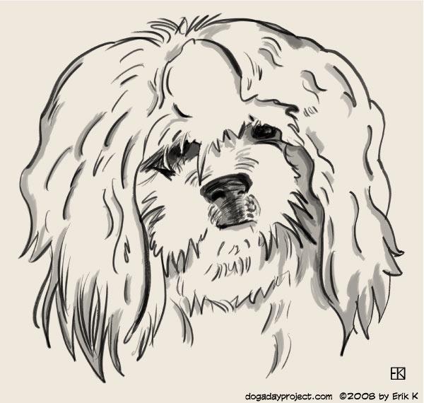 dog a day suki image