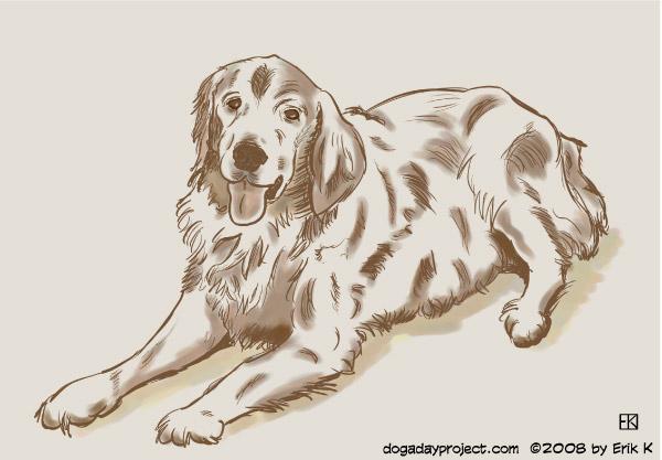 dog a day jacob image