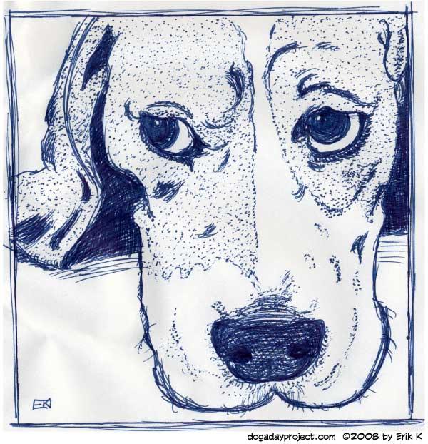 dog a day uniball beagle drawing