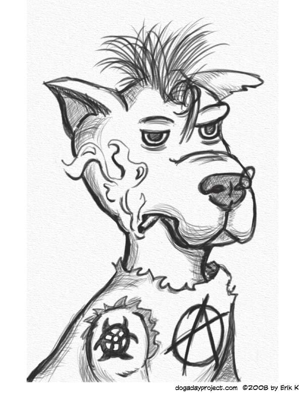 dog a day punk rock dog image