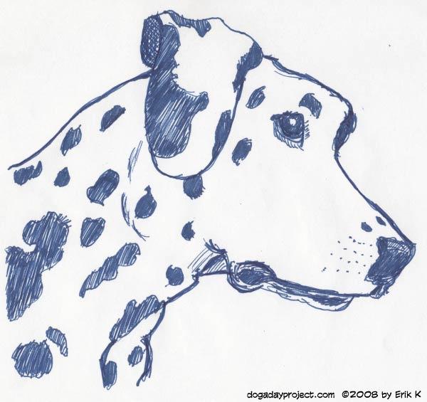 dog a day rollerball dalmatian