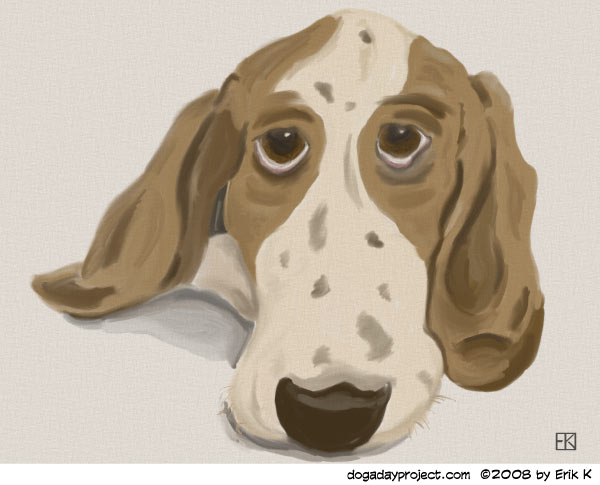 dog a day Basset in Oils image