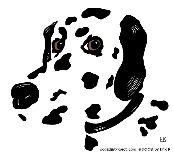 dog a day Graphic Dalmatian image