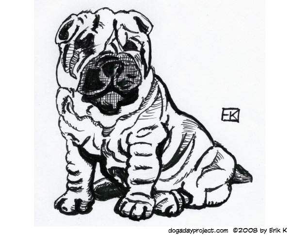 dog a day Sharpie Shar-Pei image