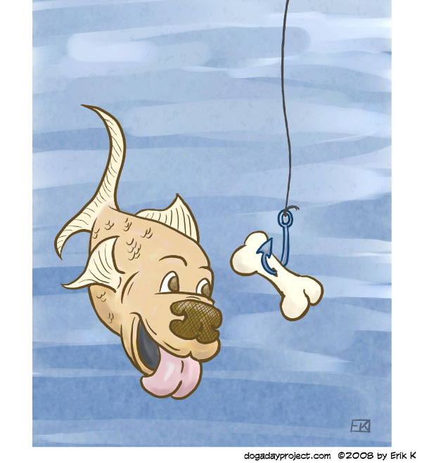 dog a day Dogfish image