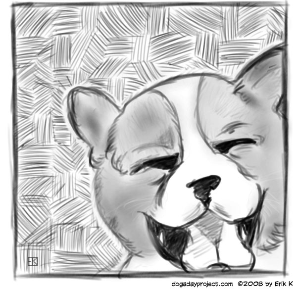 dog a day Crosshatch Puppy image