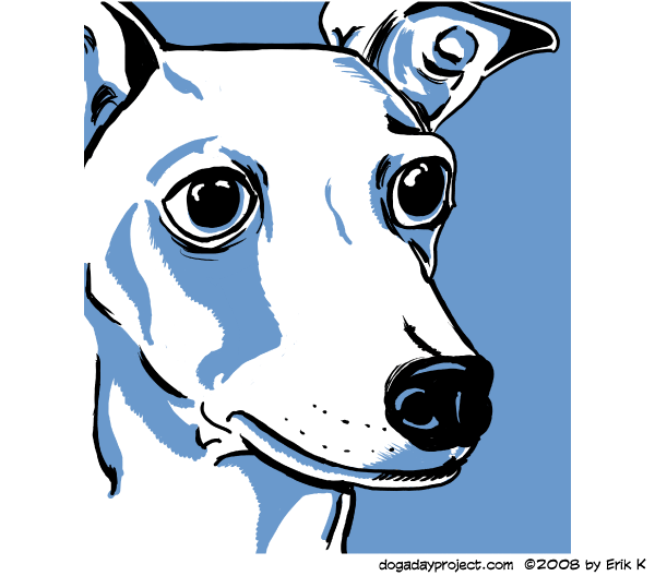 dog a day Graphic Greyhound image