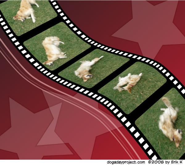 dog a day Filmstrip Dog image