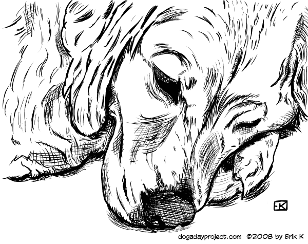 dog a day Storm in Inks image