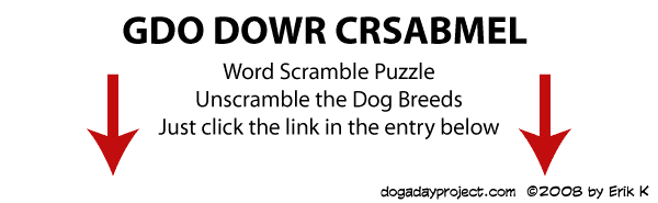 dog a day Dog Word Scramble image