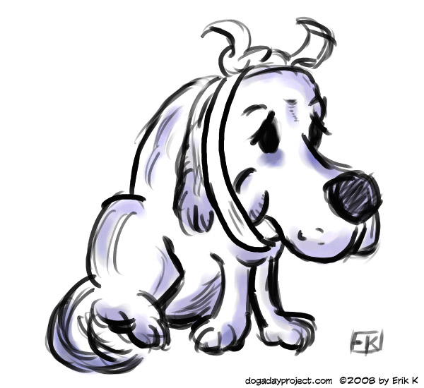 dog a day toothache image